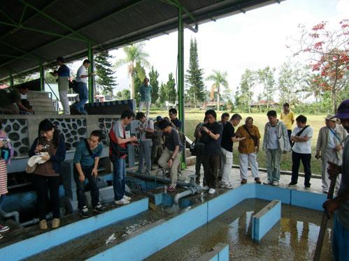 水洗式精選工程視察